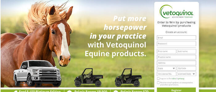 Customized Sweepstakes Case study – Vetoquinol USA
